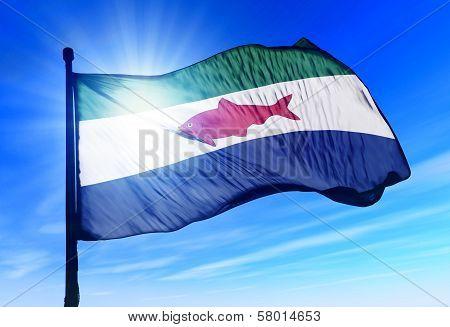 Federal Dependencies (Venezuela) flag waving on the wind poster
