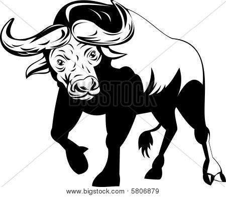 vector illustration of a Attacking African Buffalo poster