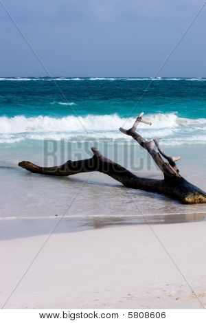 Tulum Beach In Yucatan