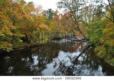 Calm River with Fall Foliage on a Cloudy Day poster