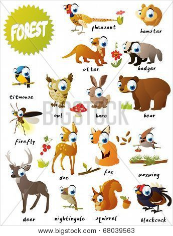 forest animals: bear, titmouse, fox, deer, firefly, doe, nightingale,  blackcock, pheasant, hamster, badger, squirrel, owl, hare, otter and waxwing