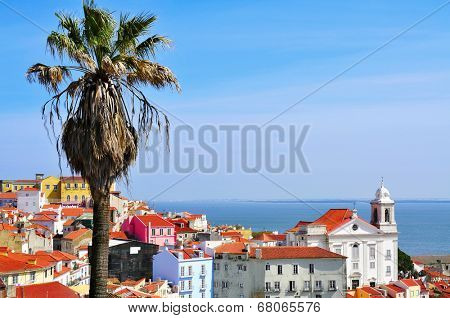 view of Alfama and the Tagus River from Miradouro de Santa Luzia in Lisbon, Portugal