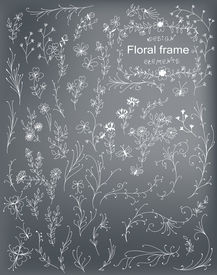 Hand -drawn Decorative Elements For Design