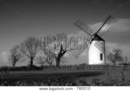 Windmill and trees