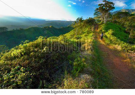 Dawn on Kuilau trail