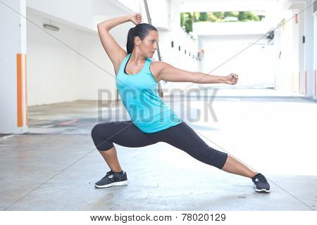 Beautiful hispanic sport woman demonstrating tai chi stance, outdoor. Concept of healthy lifestyle. poster