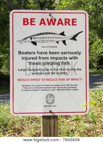 Sturgeon Warning Sign