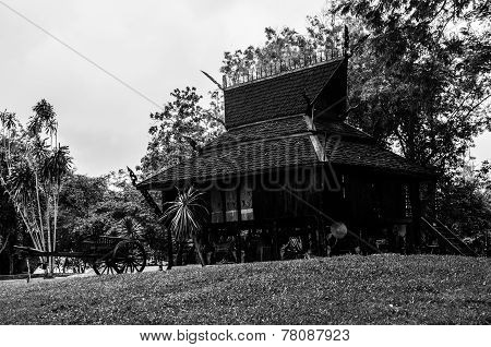 Black Temple - garden