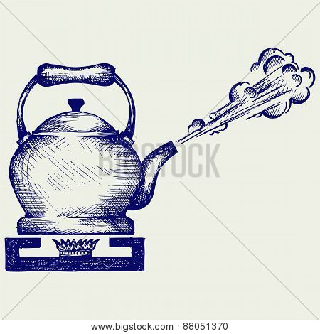 Tea kettle on gas stove