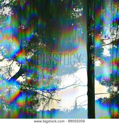 Prism Trees Abstract Landscape