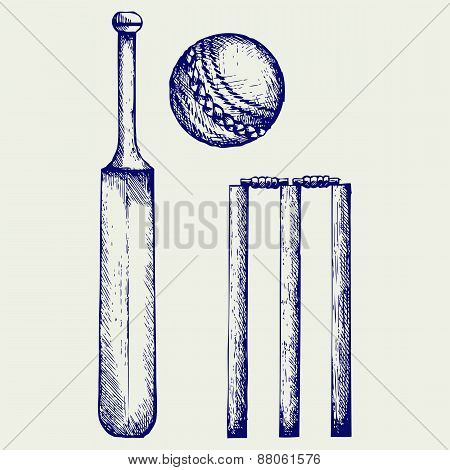 Set equipment for cricket
