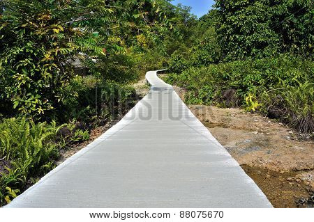 Path For Walking