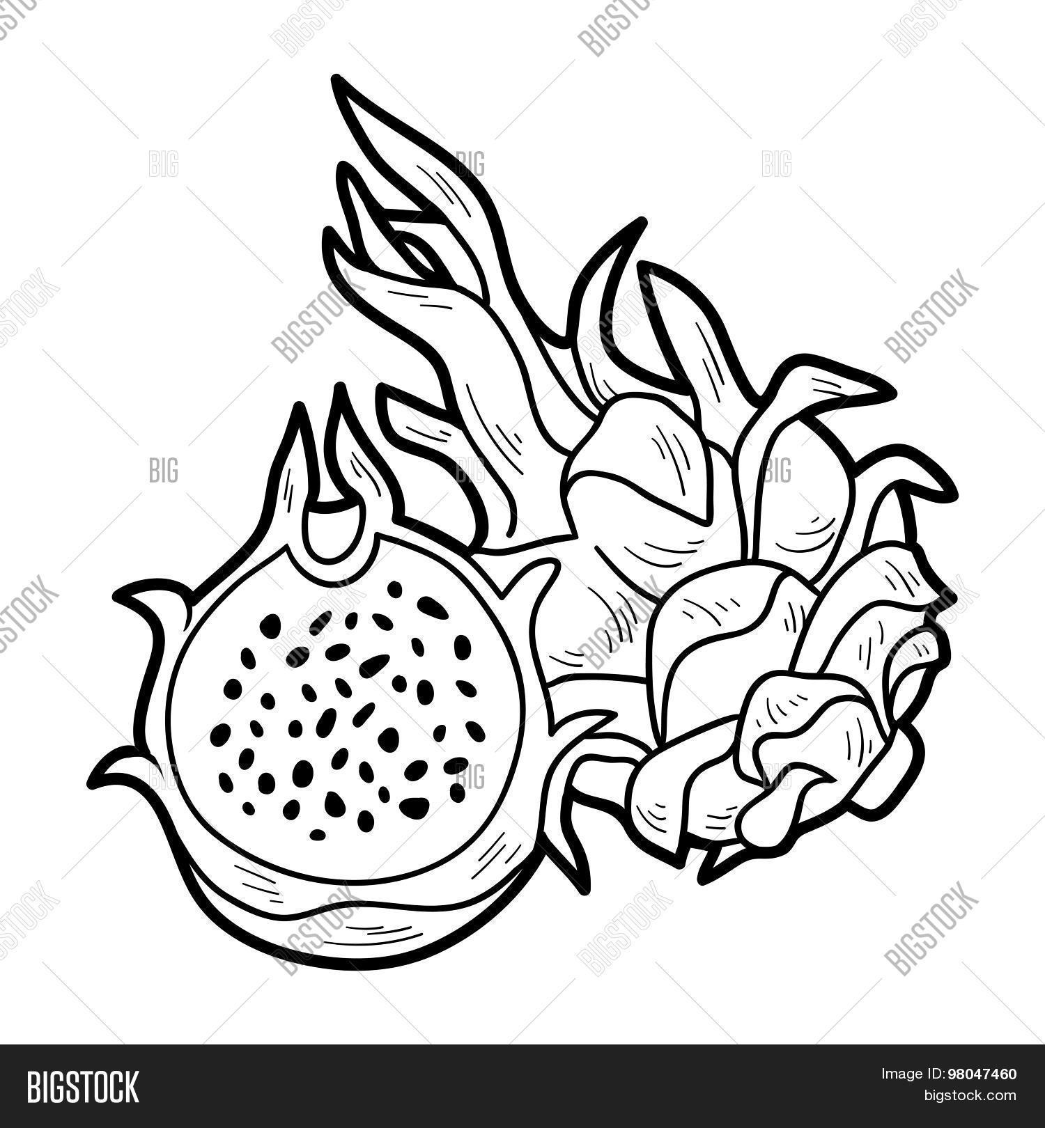 Coloring Book Game Fruits Vector Amp Photo