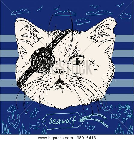 Illustration of pirate cat on blue background in vector