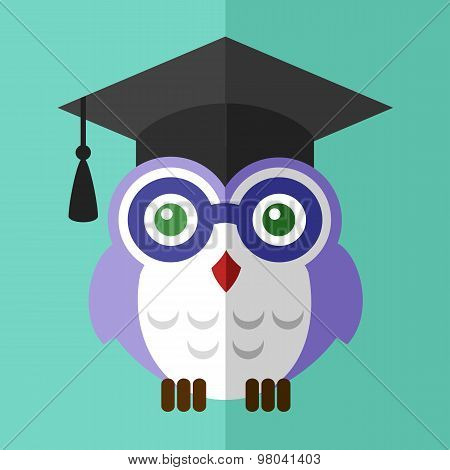 Graduation owl student  icon flat sign symbol logo