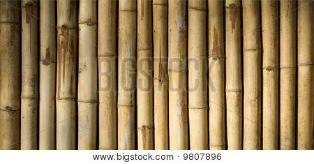 Native Style Bamboo Background