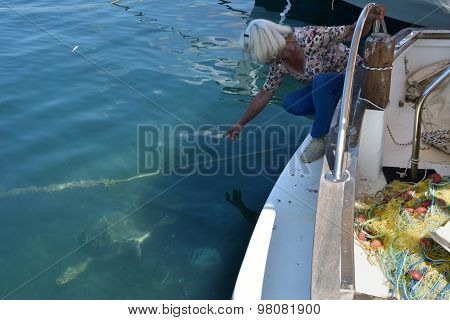 Woman And Caretta Sea Turtle