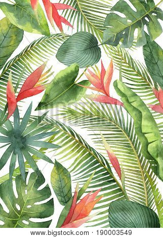 Watercolor card with tropical flowers and leaves isolated on white background. Illustration for design wedding invitations, greeting cards, postcards with space for your text.