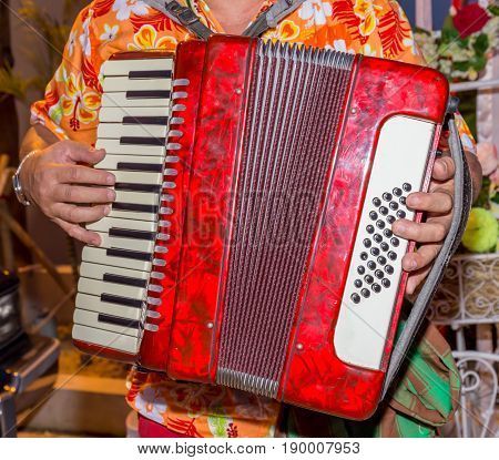 A man wears colorful shirt and plays the red accordion the street musician.