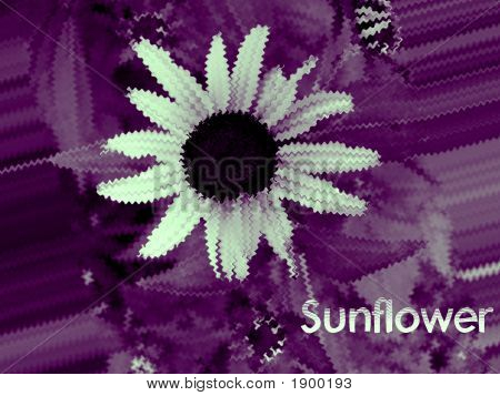 Purple rendition of sunflower using Photoshop. Original will be submitted also. poster