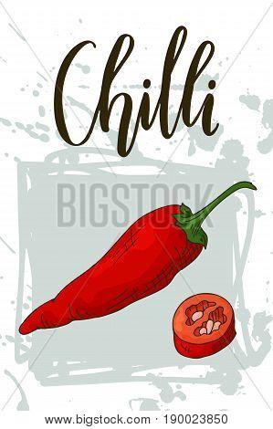 Vegetable food banner. Chilli sketch Organic food poster. Vector illustration