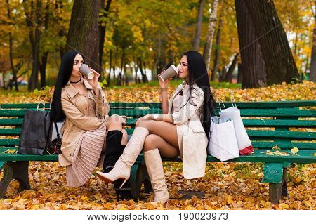 charming brunette girlfriends drinking coffee sitting on bench in the park