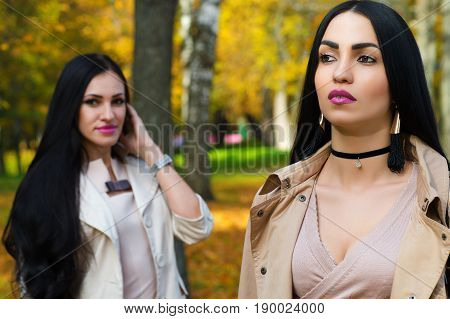 beautiful luxurious brunette with girlfriend in the park