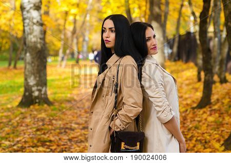 two attractive girlfriends in autumn park outdoors