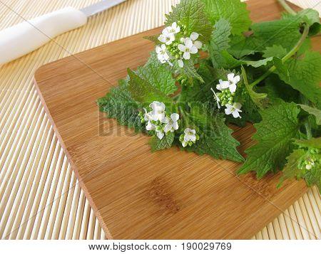 Fresh wild garlic mustard on wooden board
