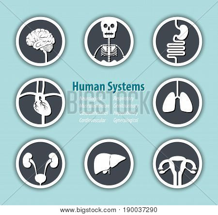 Human Systems Icon . ( Neurological . Musculoskeleton . Gastrointestinal . Cardiovascular . Respiratory . Genitourinary . Hepatobiliary . Gynecological ) .