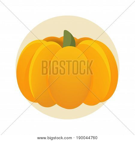Vector illustration: orange pumpkin isolated or cucurbita flat styled icon. Simple round squash.