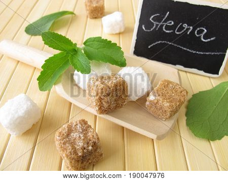 Sugar cubes and stevia leaves with nameplate