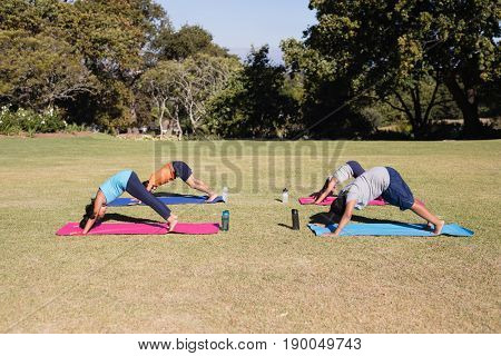 Side view of kids practicing downward facing dog pose on sunny day