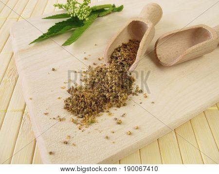 Meadowsweet flowers, Spiraeae flos, for herbal medicine