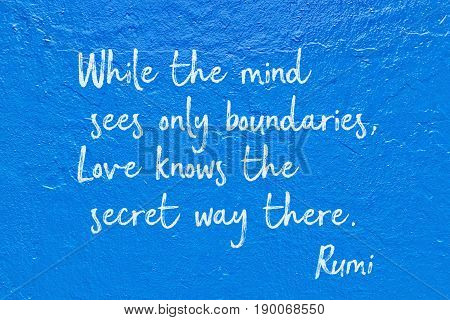 Love Knows Rumi