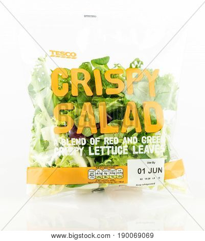Tesco Crispy Salad. Bag Of Mixed Lettuce Leaves.