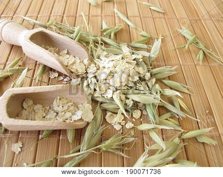 Healthy green oats straw and rolled oats