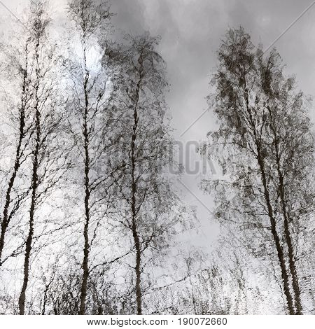 Bare Trees And Cloudy Sky Reflected In Water