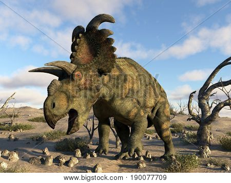 Albertaceratops dinosaur in the desert by day - 3D render