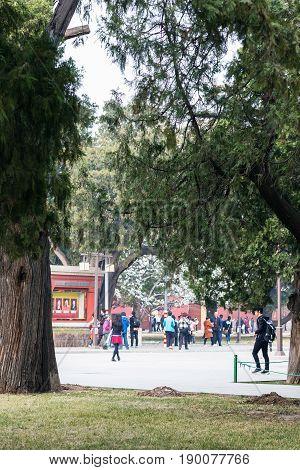 People In Public Park In Beijing In Spring