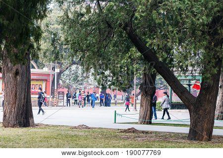 Visitors In Public Park In Beijing In Spring