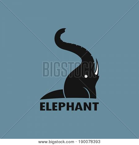 Vector of an Elephant design on a blue background