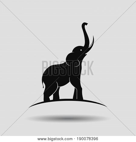 Elephant silhouette design on a grey background