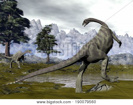 Two anchisaurus dinosaurs next to pine trees and a swamp in the mountain - 3D render