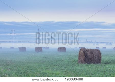 Foggy Field With Haystacks