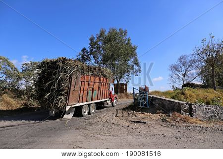 Fully loaded Sugarcane Truck in Queseria, Mexico, 2015-01-31