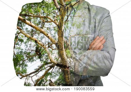 Double Exposure of Businessman with Green Tree Branch Trunk as Eco-friendly or Environmen Conserving Concept.