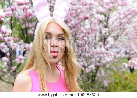 Spring easter holidays celebration Happy woman or pretty girl showing tongue funny face grimace in bunny ears on blond long hair at trees with blossoming flowers in park on floral environment.