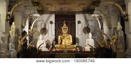 Several Buddha statues in the temple. Sri Lanka