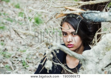 Cute Girl Hiding In Bare Tree Branches